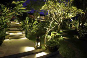 eclairage-exterieur-lanternes-poser-plantes-exotiques-bananier